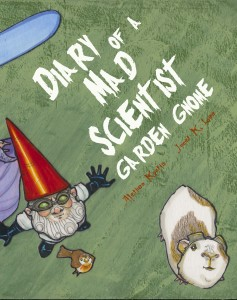 Dr Gnome Cover