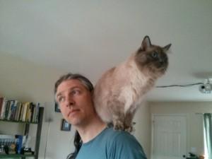 Gra Linnaea & Supercat!